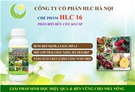 PHÂN BÓN HỮU CƠ CAO CẤP HLC 16