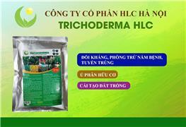 CHẾ PHẨM SINH HỌC TRICHODERMA HLC 500GR
